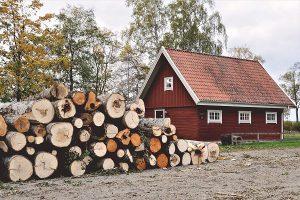 Haus mit Holz